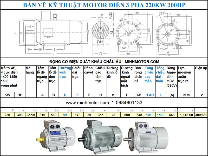 Bản vẽ kĩ thuật động cơ điện 300Hp 220Kw 4 cực điện