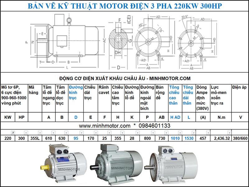 Bản vẽ thông số kĩ thuật Động cơ điện 300Hp 220Kw 6 Cực Điện