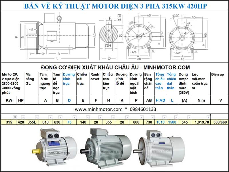 Thông số kĩ thuật bản vẽ động cơ điện 430Hp 315Kw 2 Cực điện