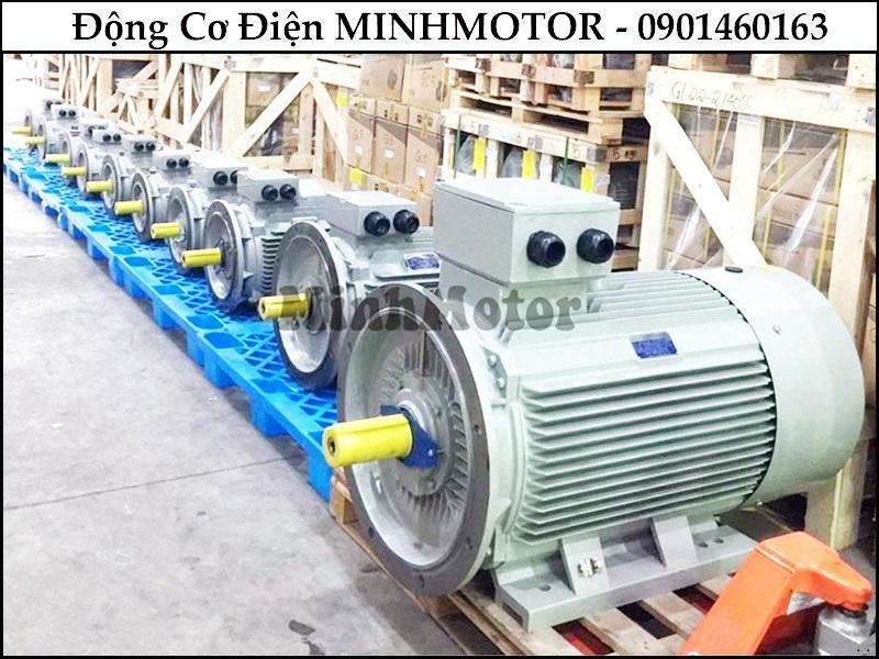 dong-co-dien-3-pha-mat-bich-7-5hp-5-5kw-6-cuc-dien-6-poles