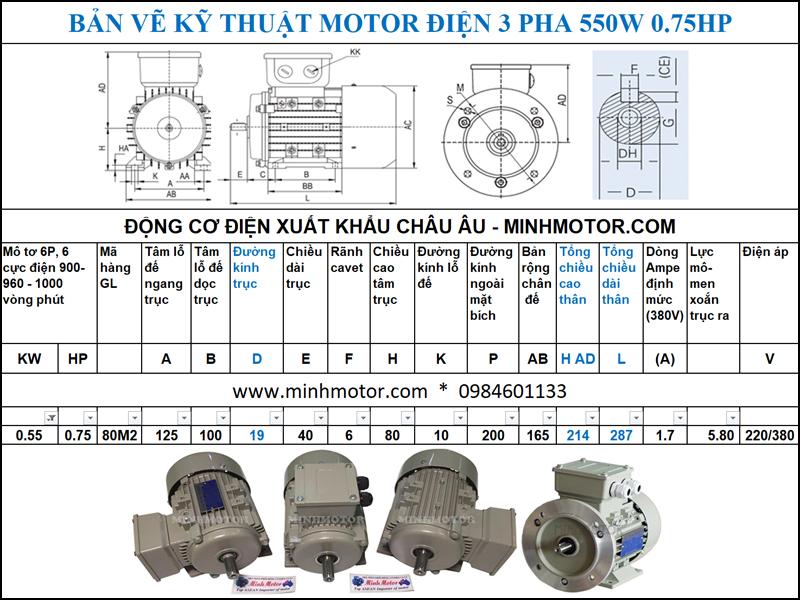 Bản vẽ cataloge Động Cơ Điện 3 Pha 0.75HP 0.55Kw 6 Cực