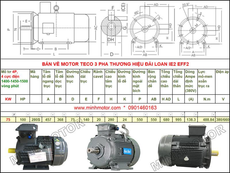 Bản vẽ kỹ thuật motor Teco 75kw 100HP 4 cực điện