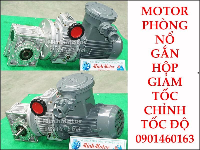 Motor phòng nổ 0.75kw 1HP gắn với hộp điều chỉnh tốc độ