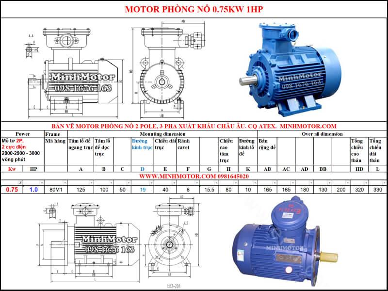 Thông số Động Cơ Điện Phòng Nổ 0.75kw 2 cực 2 Pole 2900 vòng/phút