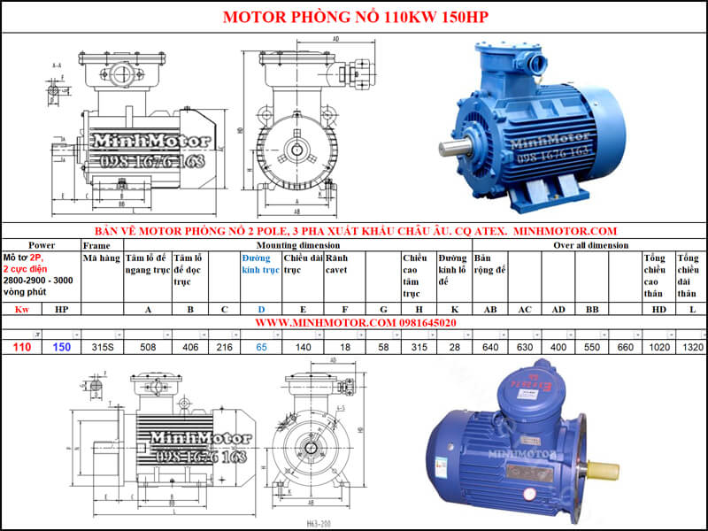 Thông số Động Cơ Điện Phòng Nổ 110kw 2 cực 2 Pole 2900 vòng/phút