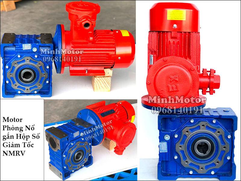 Motor giảm tốc phòng nổ NMRV