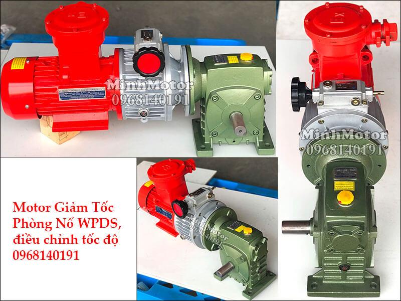 motor giảm tốc phòng nổ WPDS, điều chỉnh tốc độ