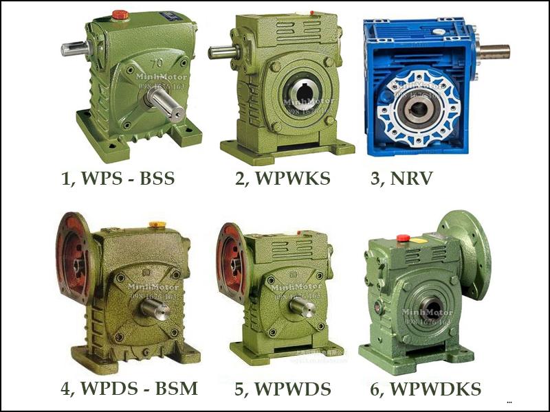Hộp Số Giảm Tốc WPS WPDS Trục Cốt Trên Size 100 WPS-BSS, WPWKS, NRV, WPDS-BSM, WPWDS, WPWDKS