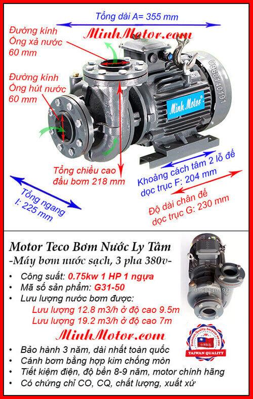 Máy bơm Teco 1Hp 0.75kw G31-50, lưu lượng 19.2 m3/h, cột áp 9.5m