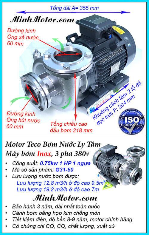 Bơm nước Teco 1Hp 0.75Kw đầu inox G31-50, lưu lượng 19.2 khối, đẩy cao 9.5m