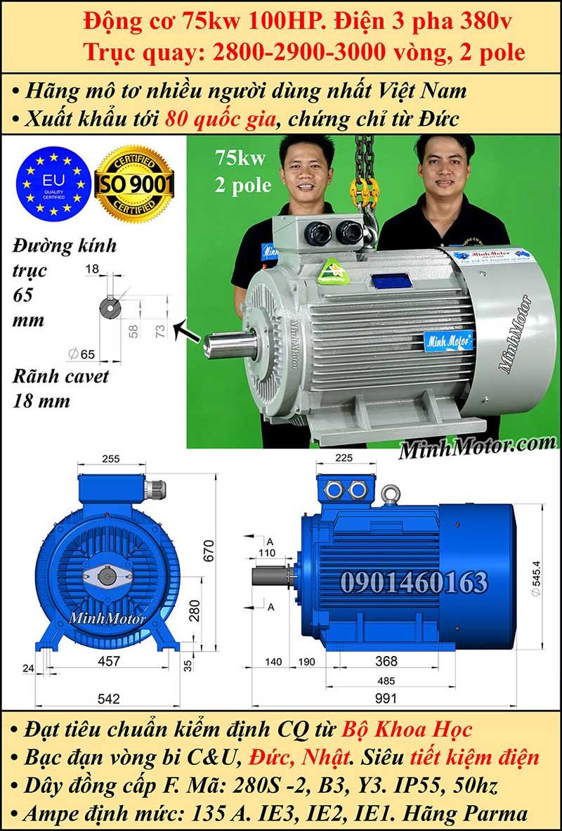 Động cơ 100HP 75kW 2900-3000 vòng 3 pha, chân đế