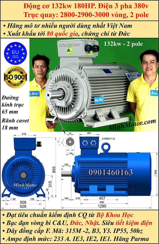 Động cơ 180HP 132kW 2900-3000 vòng 3 pha, chân đế
