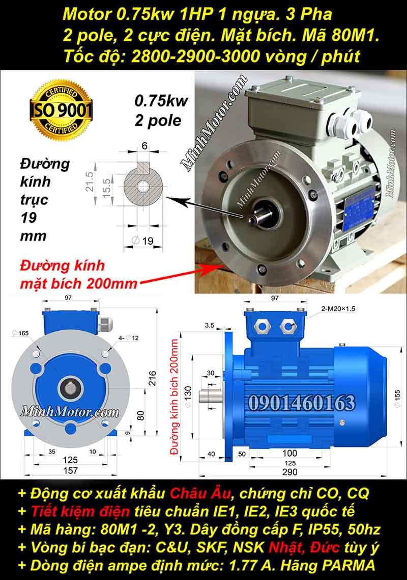 Động cơ 1HP 0.75kW 2900-3000 vòng 3 pha, mặt bích