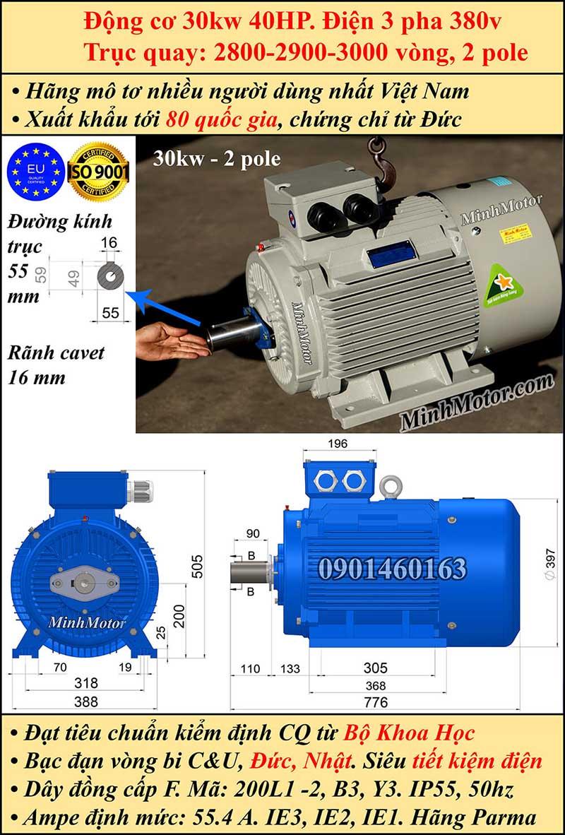 Thông số kĩ thuật bản vẽ động cơ điện 40Hp 30Kw 2 Cực điện