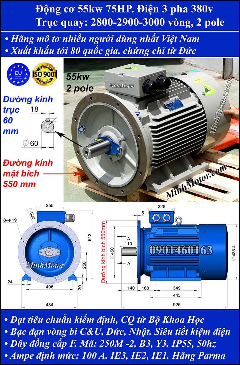 Động cơ 75HP 55kW 2900-3000 vòng 3 pha, mặt bích