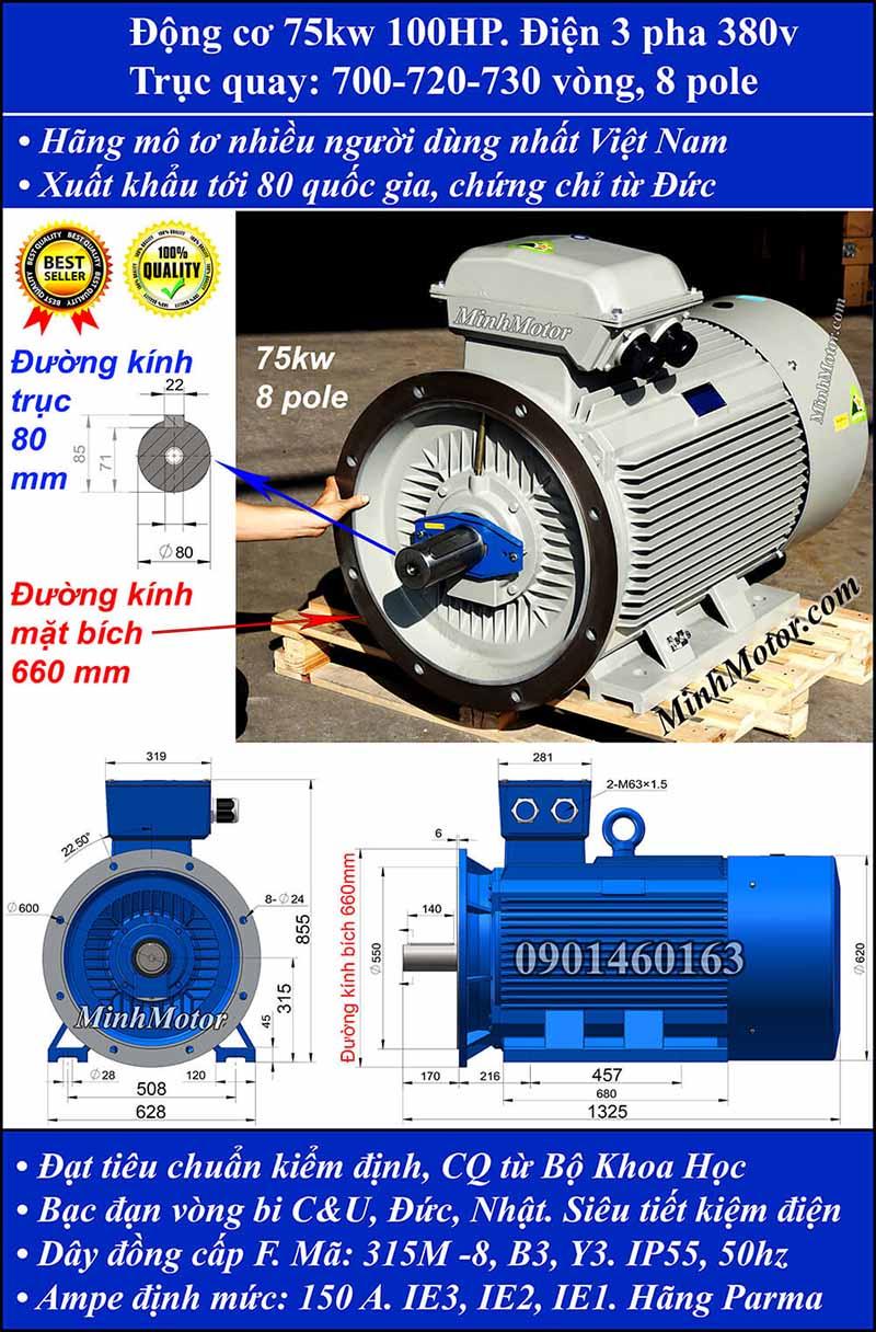 Motor 75kW 100HP 3 pha 8 cực, mặt bích