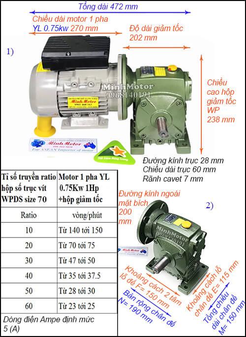 Motor hộp số 1 pha 220v 0.75kw 1hp WPDS size 70