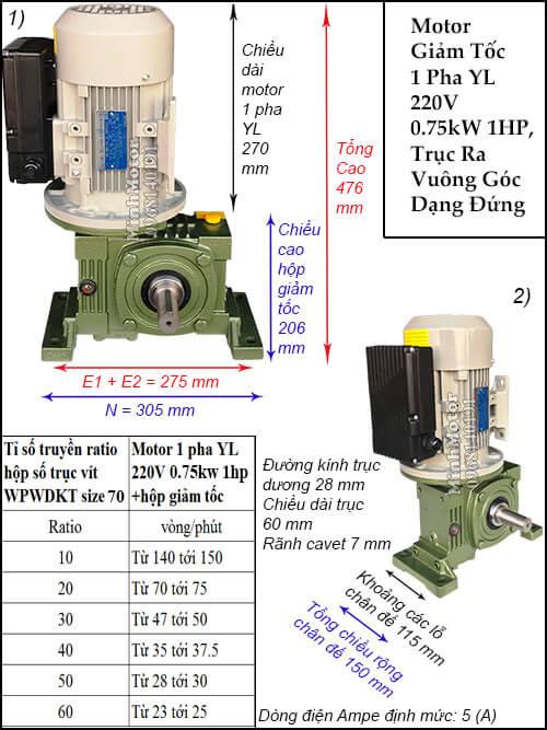 Motor 1 pha 220V 0.75kw 1hp gắn hộp giảm tốc WPWDKTsize 70