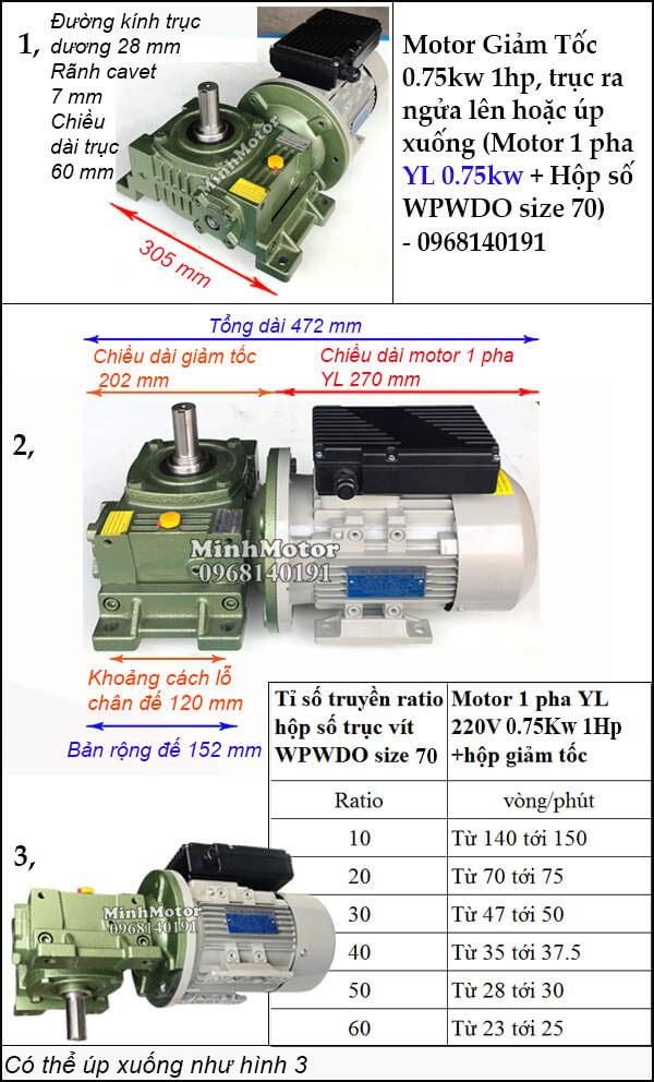Motor hộp số 1 pha 220v 0.75kw 1hp WPWDO size 70