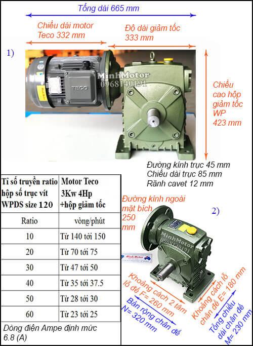 Động cơ hộp số Teco 3kw 4hp WPDS, cốt dương
