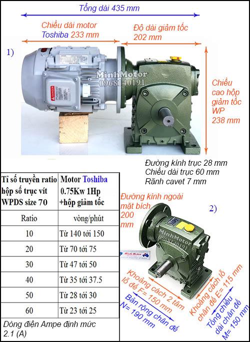 Động cơ hộp số Toshiba 0.75Kw 1Hp WPDS, trục dương size 70