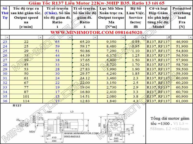 Động cơ giảm tốc 22Kw 30HP R137