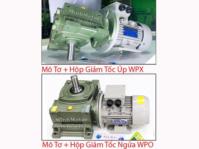 Motor+Hộp Giảm tốc úp WPX, ngửa WPO