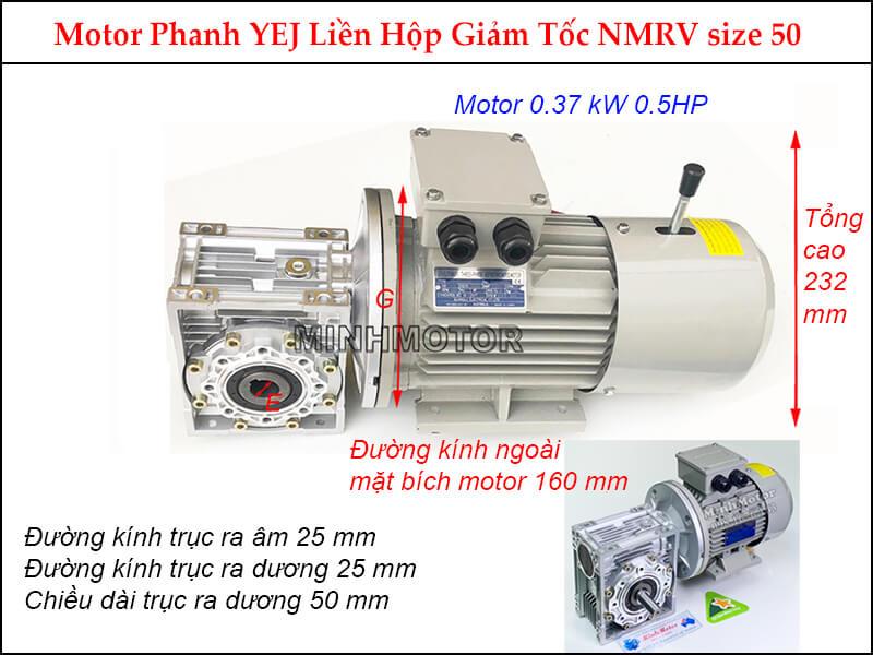 Motor giảm tốc có thắng trục vuông góc 0.37kw 0.5HP 0.5 ngựa NMRV size 50