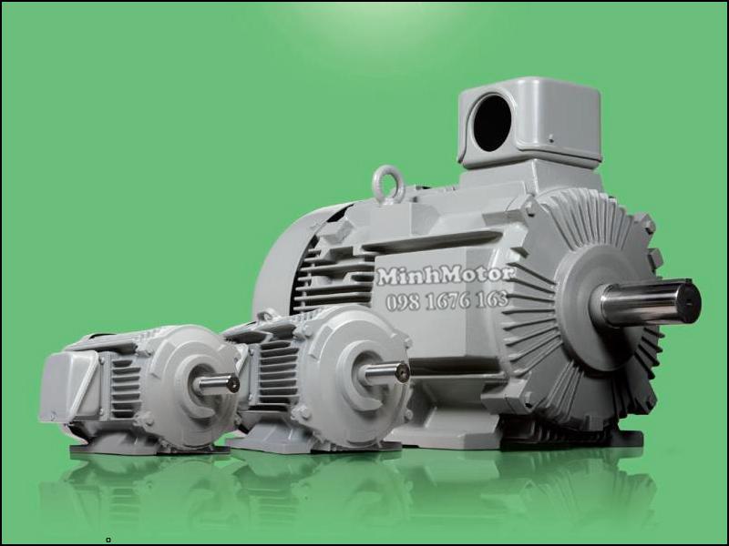 động cơ Hitachi 1.5kw 2HP 2 ngựa